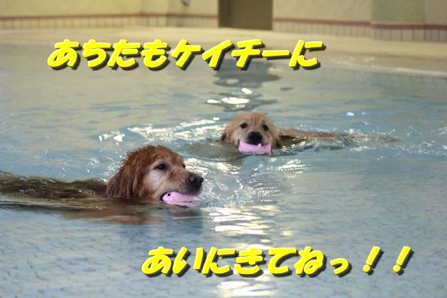 ティアナちゃんとプール2 034