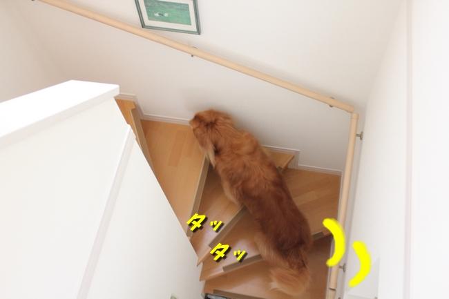 チェア階段 002