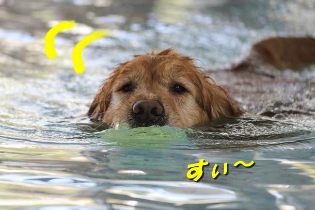 こなつとさくら4月お水の日 002