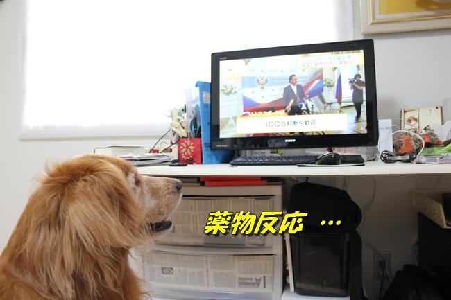 TVPC表情 097
