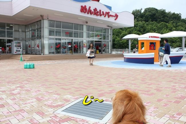 めんたいパーク 014
