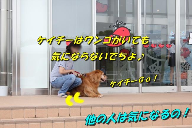 めんたいパーク 024