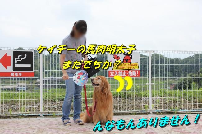 めんたいパーク 018