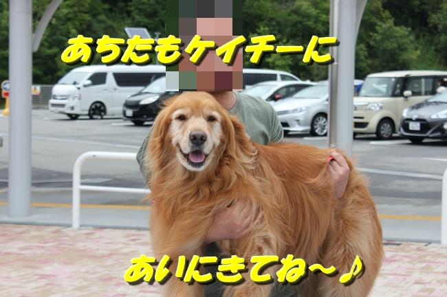 めんたいパーク 053