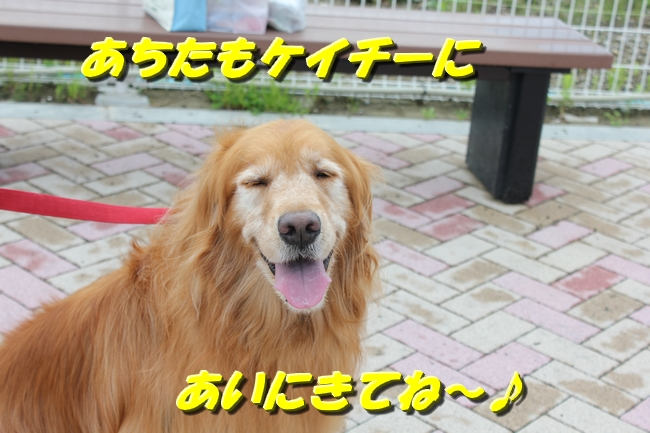 めんたいパーク 038