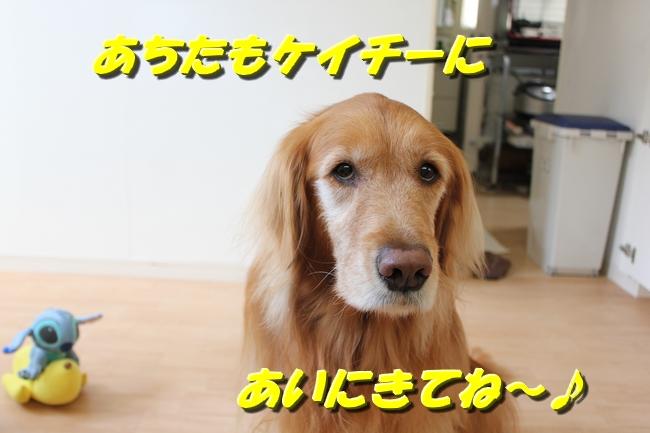 箱根駅伝 037