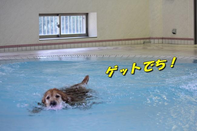 プールとジュリー 073