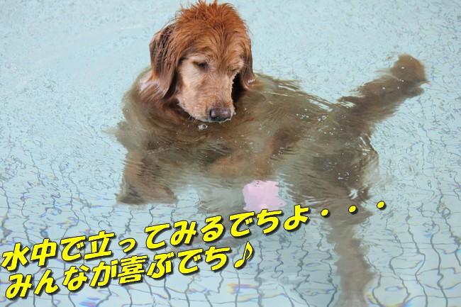 プールとジュリー 148