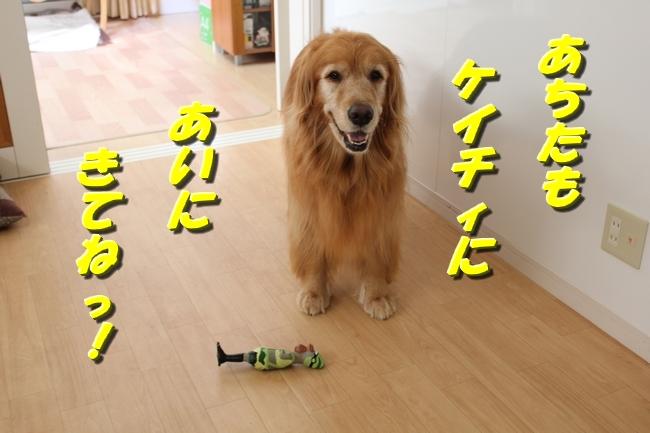 競泳ケイティ3000安打ゴレンジャー 014