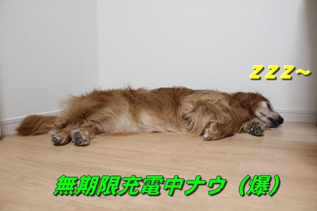 お届け物と爆睡 011