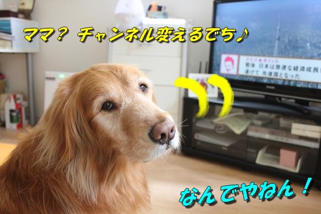 tv鑑賞 015