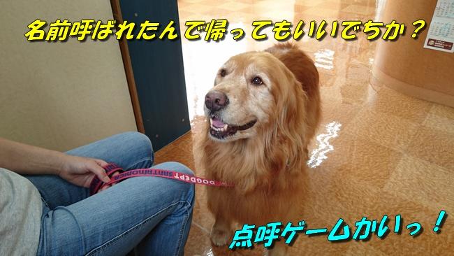 DSC_0391.jpg
