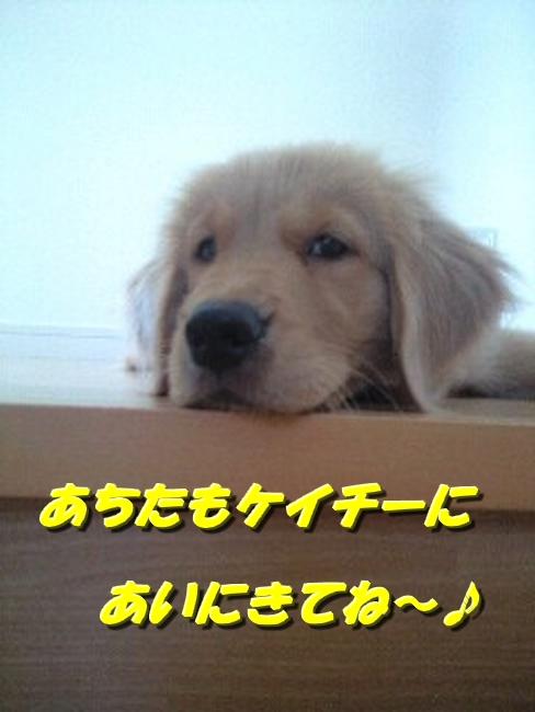 GRP_0128.jpg