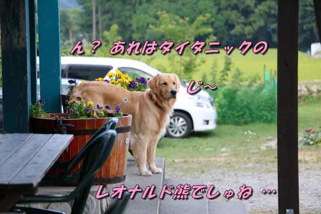 IMG_2157_20160830174115d08.jpg