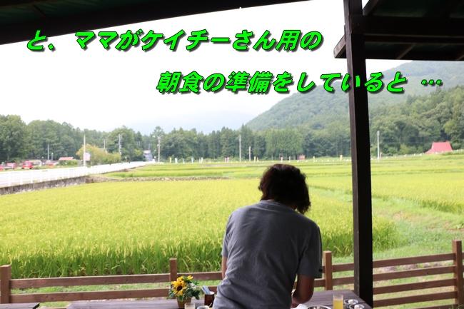 IMG_2723.jpg