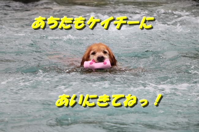 IMG_3147.jpg