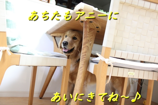 IMG_3494.jpg