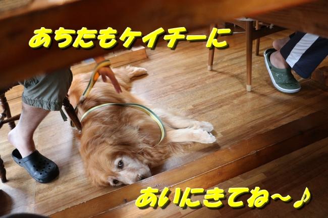 IMG_3841.jpg