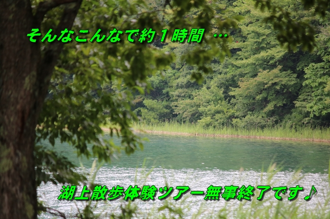 IMG_3929.jpg