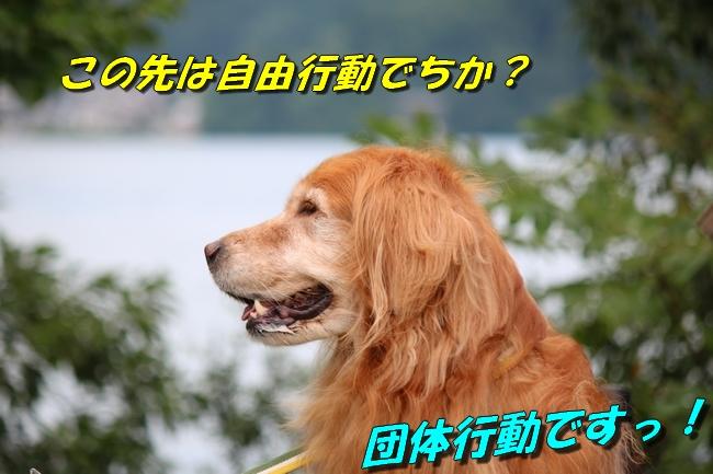 IMG_3961.jpg