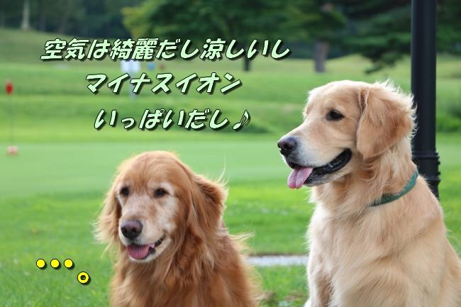 IMG_4191.jpg