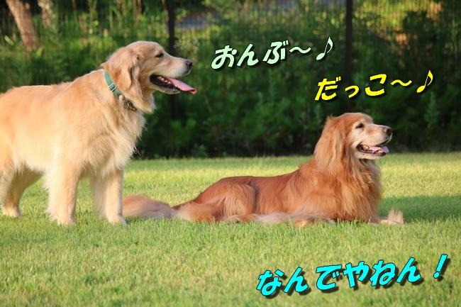 IMG_4438.jpg