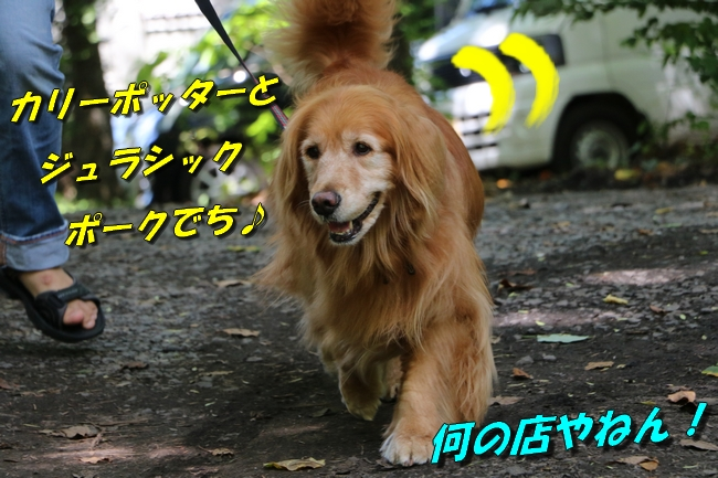 IMG_4670.jpg