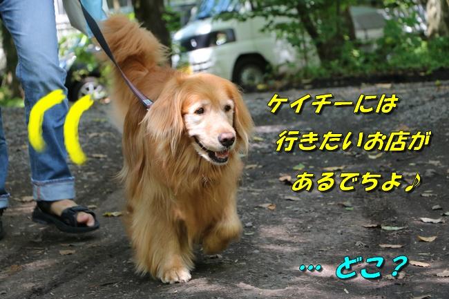 IMG_4671.jpg