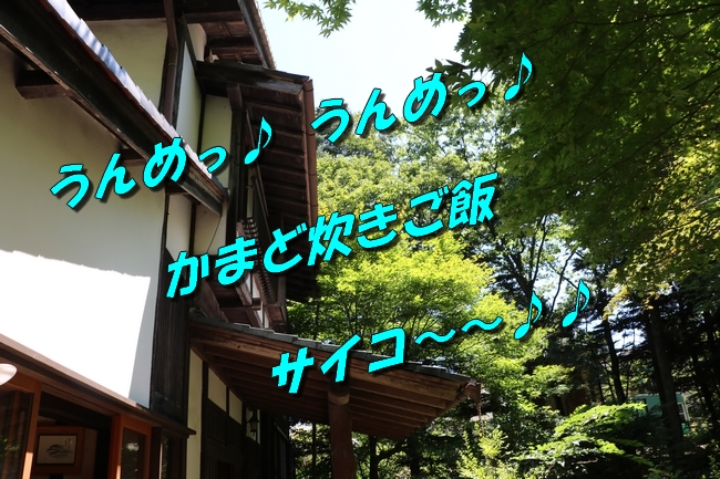 IMG_4709.jpg
