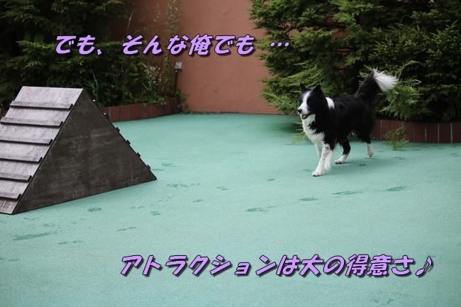 IMG_4909.jpg