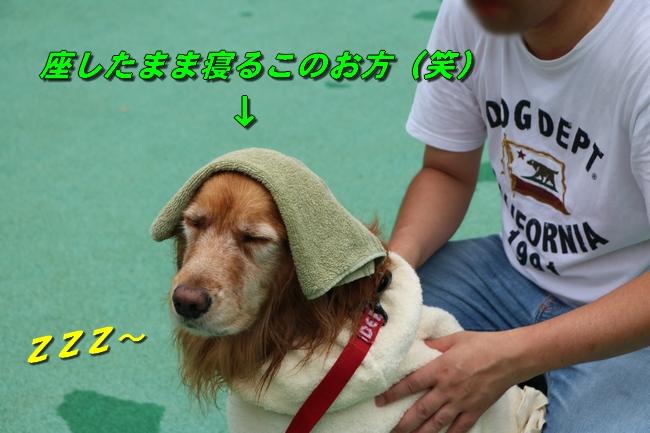 IMG_5376.jpg