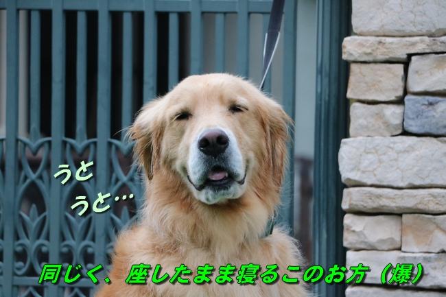 IMG_5421.jpg