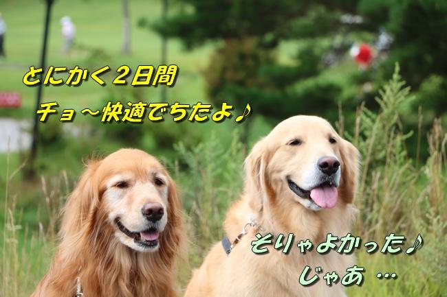 IMG_5552.jpg