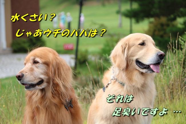 IMG_5555.jpg