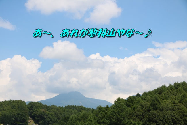 IMG_5701.jpg