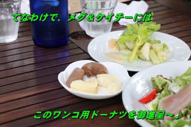 IMG_5728.jpg