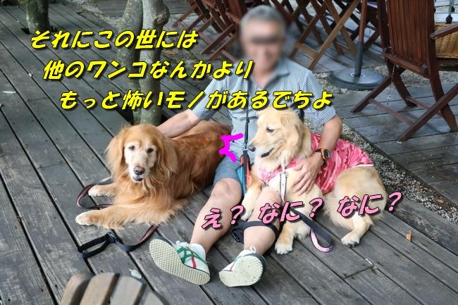 IMG_5889.jpg