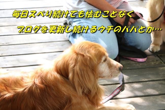 IMG_5959.jpg