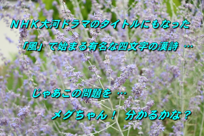 IMG_6166.jpg