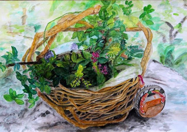 水彩画「アケビの蔓籠と野の草花」