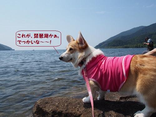 琵琶湖かぁ。
