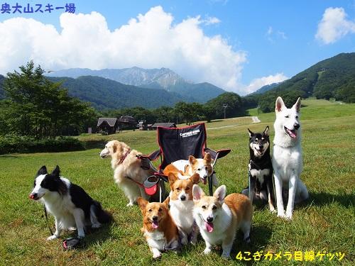 大山で記念写真