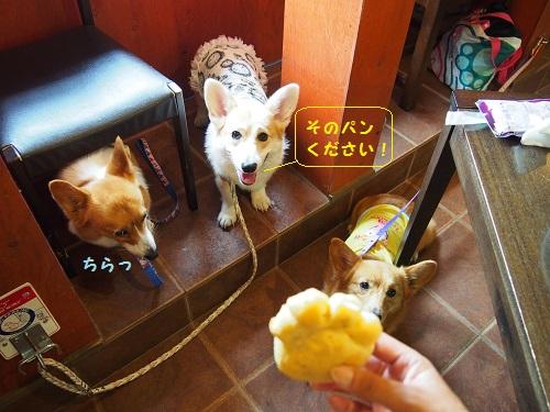 ワンパン食べたい