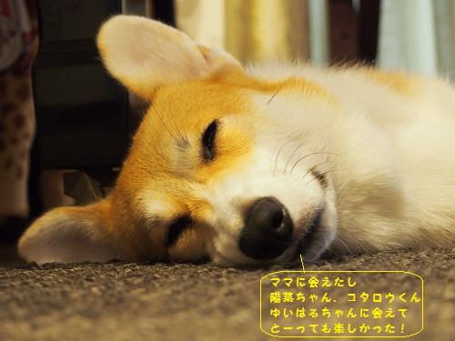 満足の睡眠