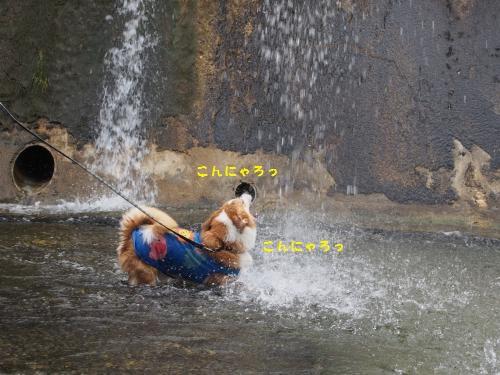 水やっつけるおーちゃん