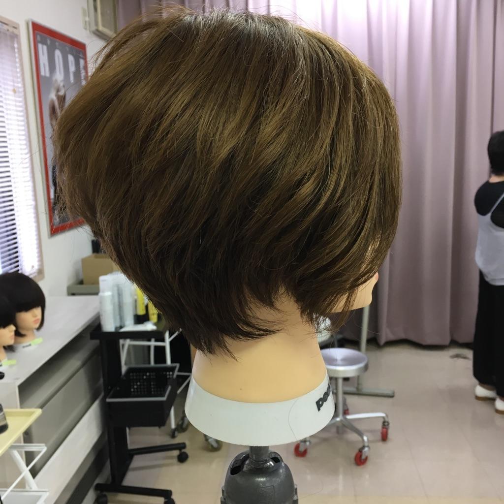 mika_20160731105014321.jpg