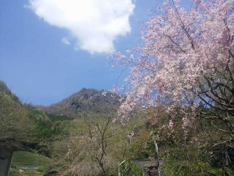 登山口から見る「奥久慈男体山」