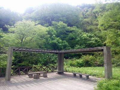 花園神社の駐車場