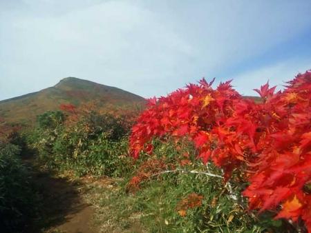紅葉の栗駒山-4