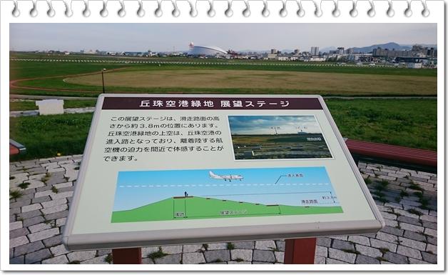 空港緑地⑭